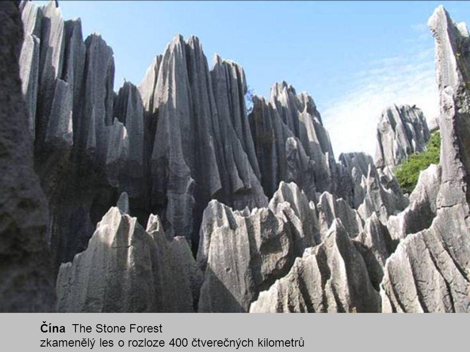 Čína The Stone Forest zkamenělý les o rozloze 400 čtverečných kilometrů