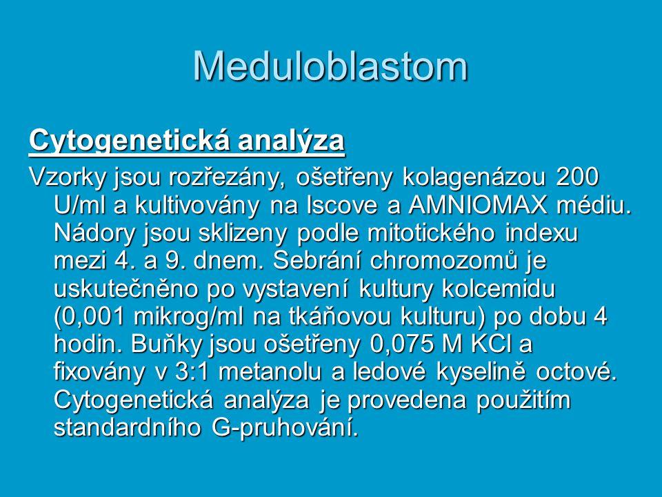 Meduloblastom Cytogenetická analýza