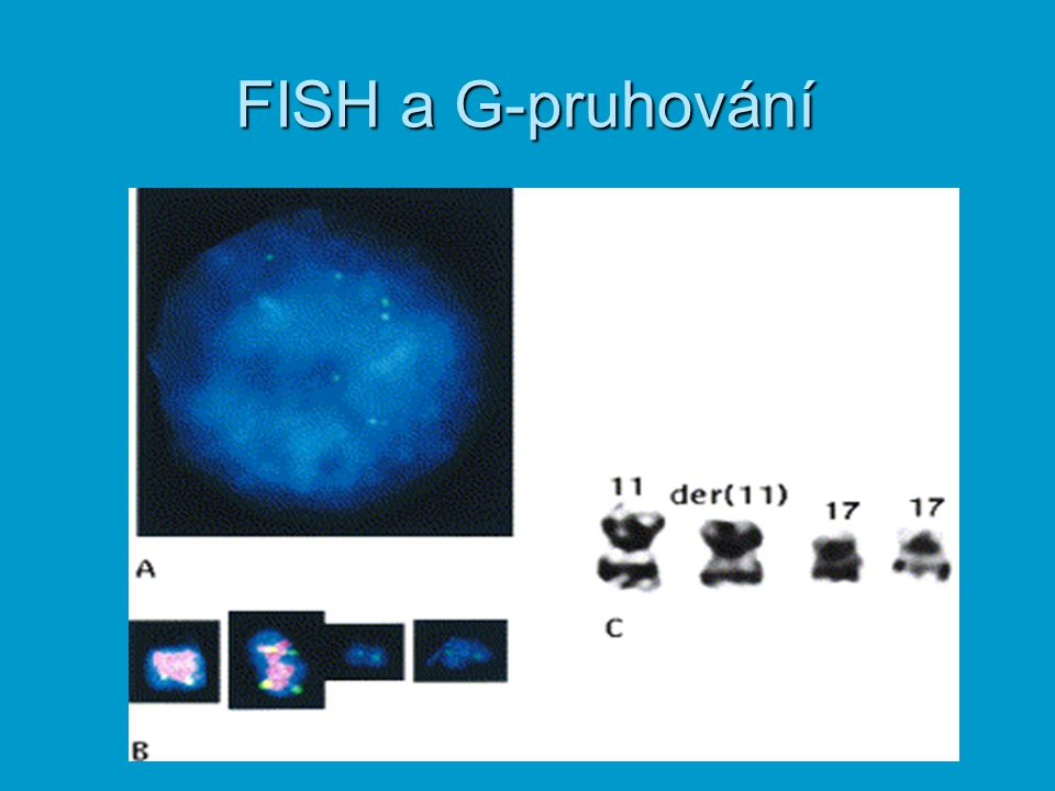 FISH a G-pruhování