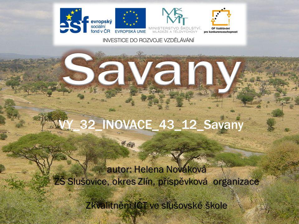 Savany VY_32_INOVACE_43_12_Savany autor: Helena Nováková