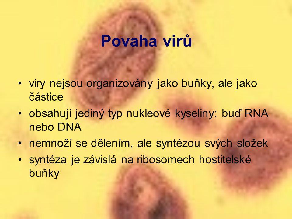 Povaha virů viry nejsou organizovány jako buňky, ale jako částice
