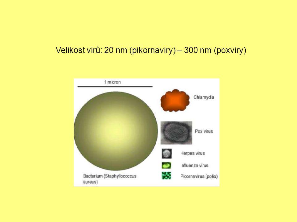 Velikost virů: 20 nm (pikornaviry) – 300 nm (poxviry)