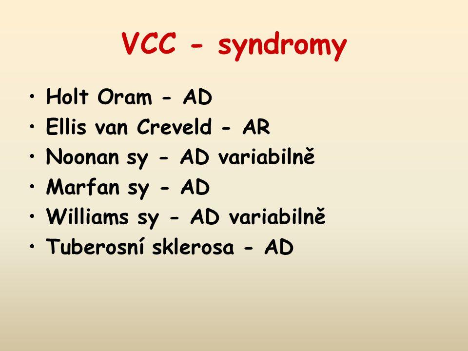 VCC - syndromy Holt Oram - AD Ellis van Creveld - AR