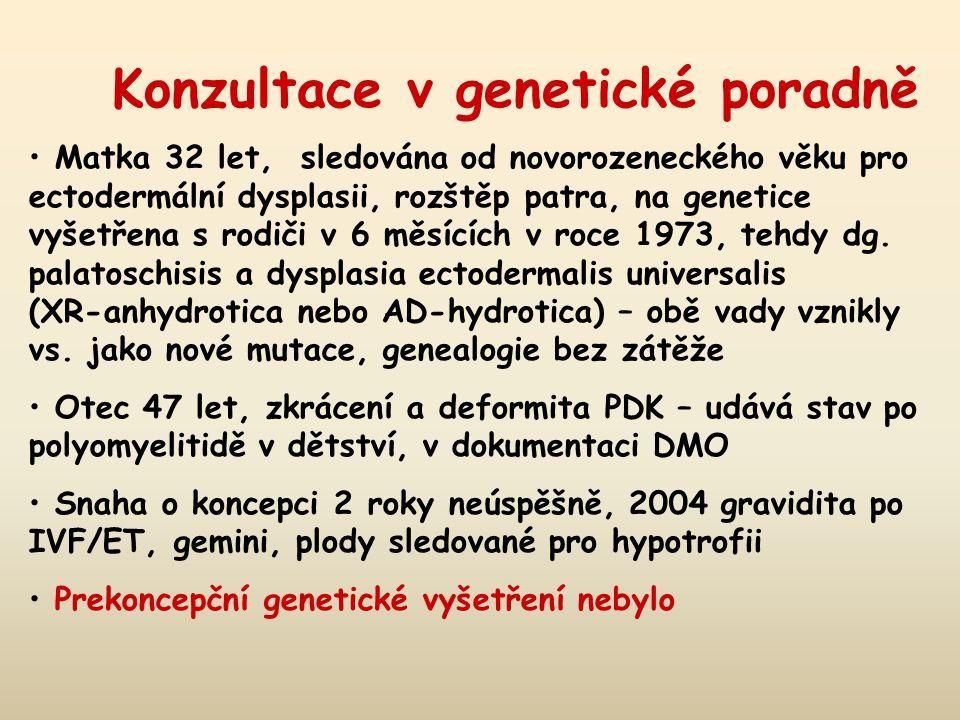 Konzultace v genetické poradně