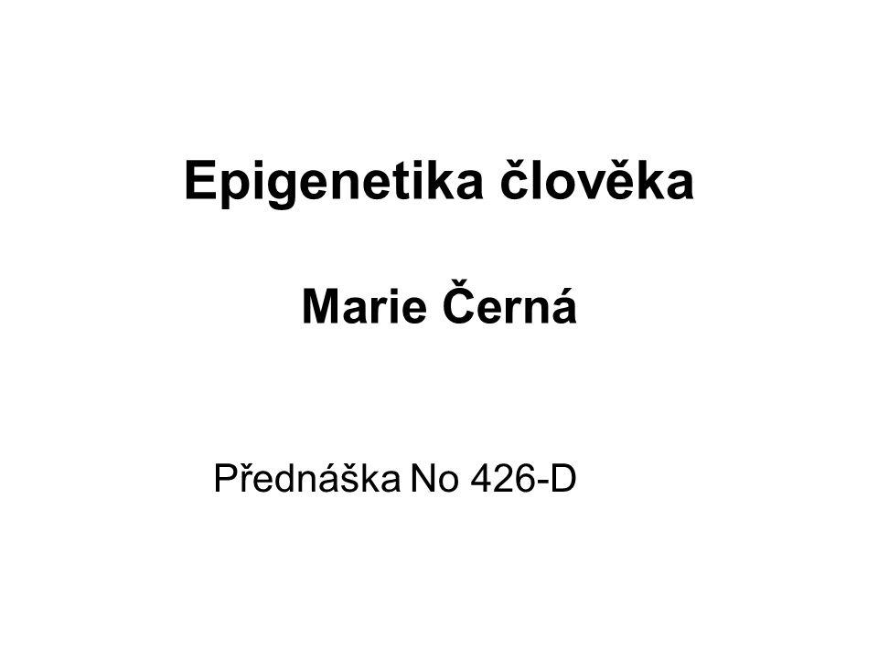 Epigenetika člověka Marie Černá