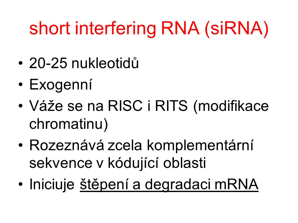 short interfering RNA (siRNA)