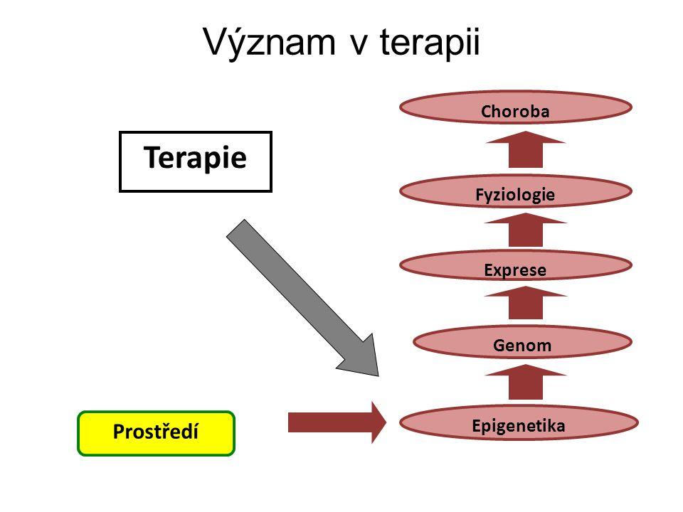 Význam v terapii Terapie Prostředí Choroba Fyziologie Exprese Genom
