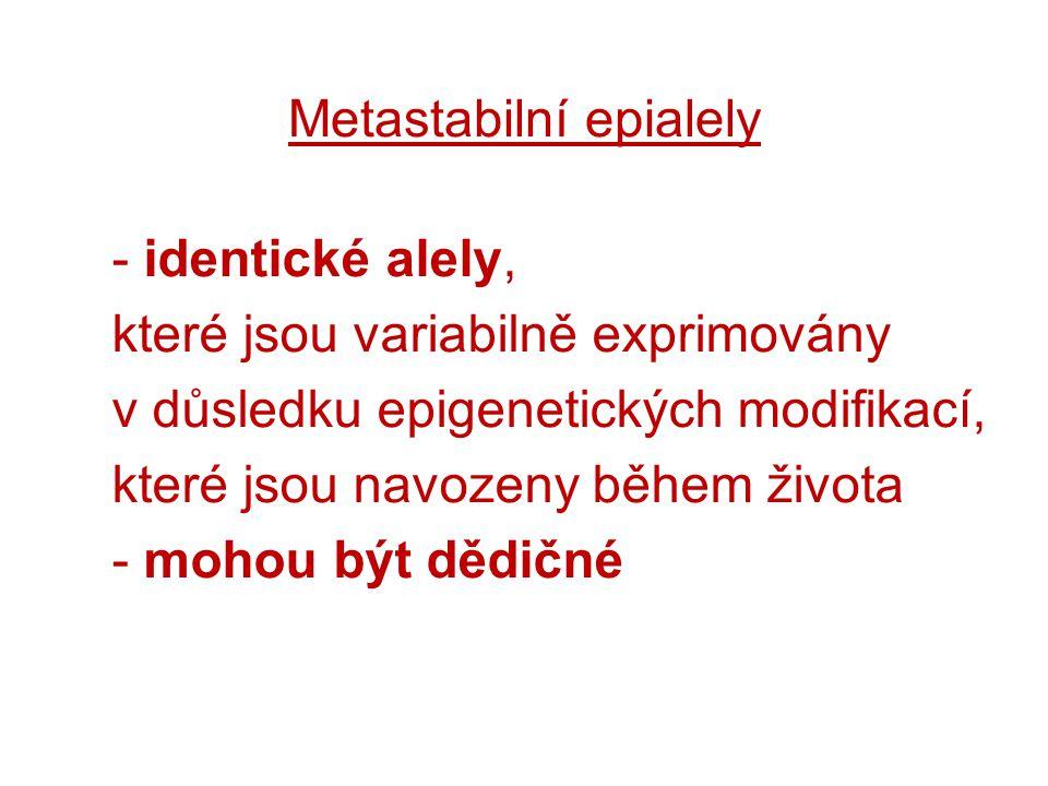 Metastabilní epialely