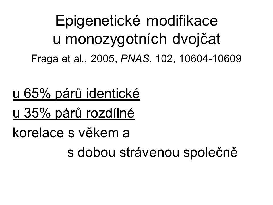 Epigenetické modifikace u monozygotních dvojčat Fraga et al