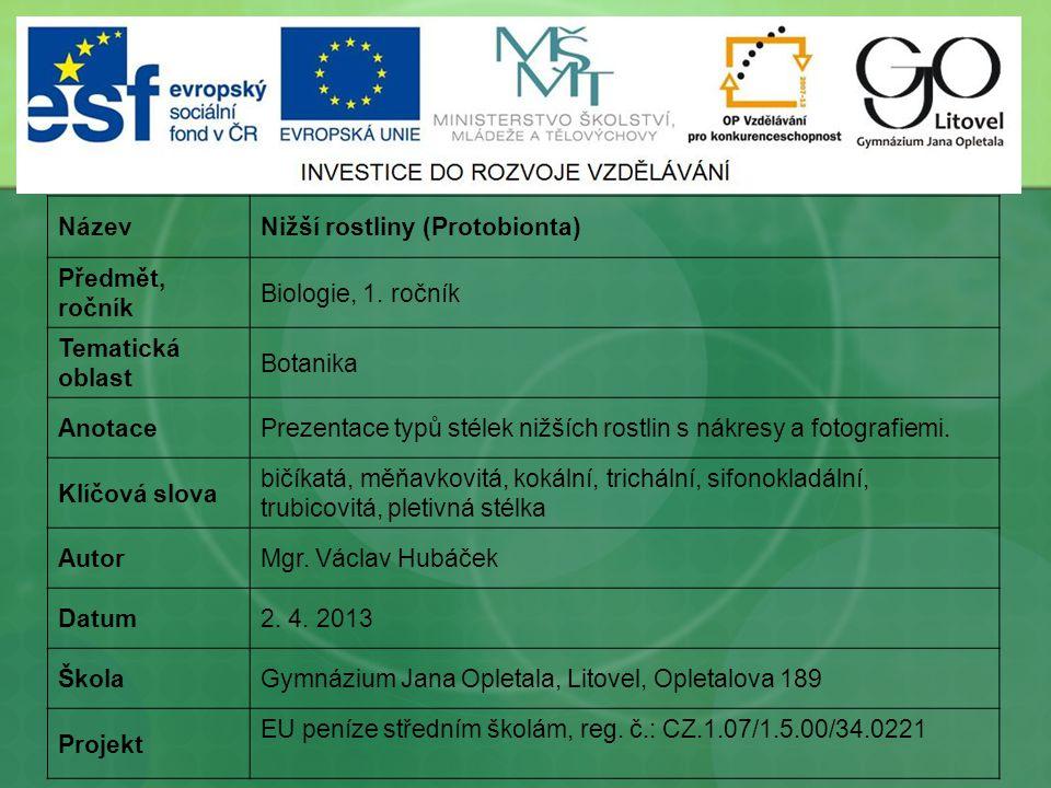Název Nižší rostliny (Protobionta) Předmět, ročník. Biologie, 1. ročník. Tematická oblast. Botanika.