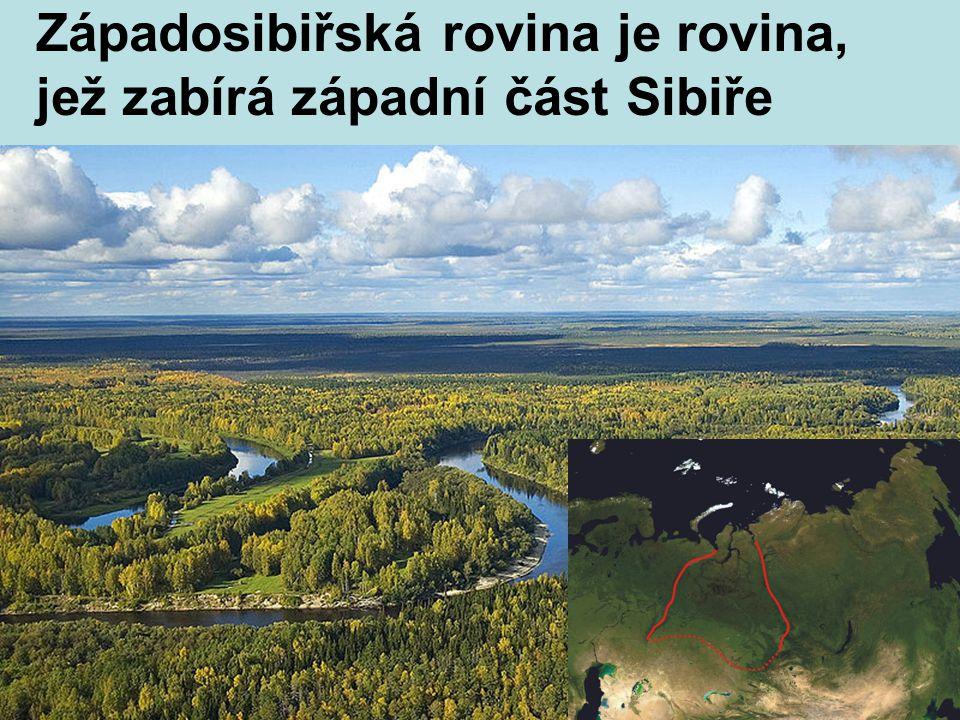 Západosibiřská rovina je rovina, jež zabírá západní část Sibiře