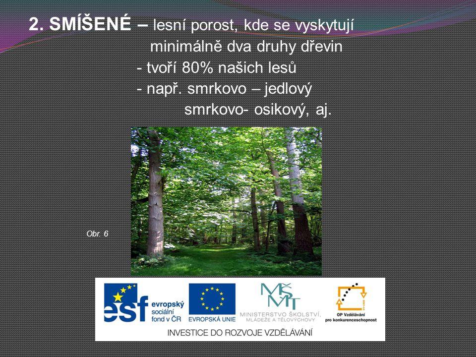 2. SMÍŠENÉ – lesní porost, kde se vyskytují