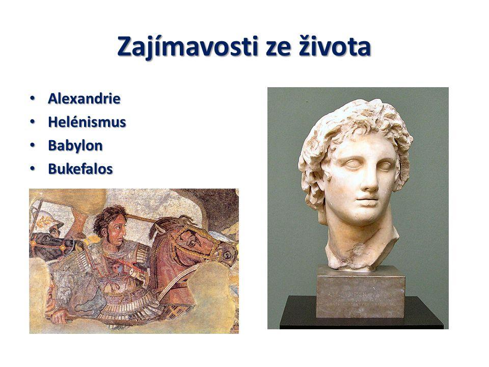 Zajímavosti ze života Alexandrie Helénismus Babylon Bukefalos