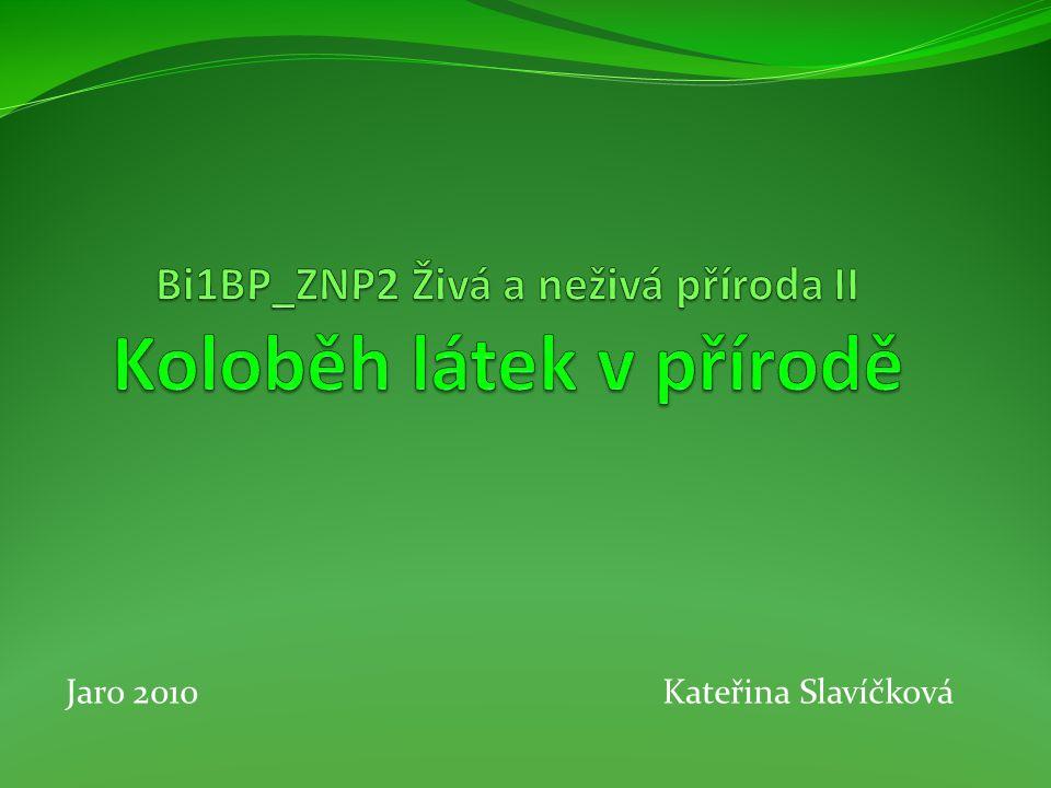 Bi1BP_ZNP2 Živá a neživá příroda II Koloběh látek v přírodě