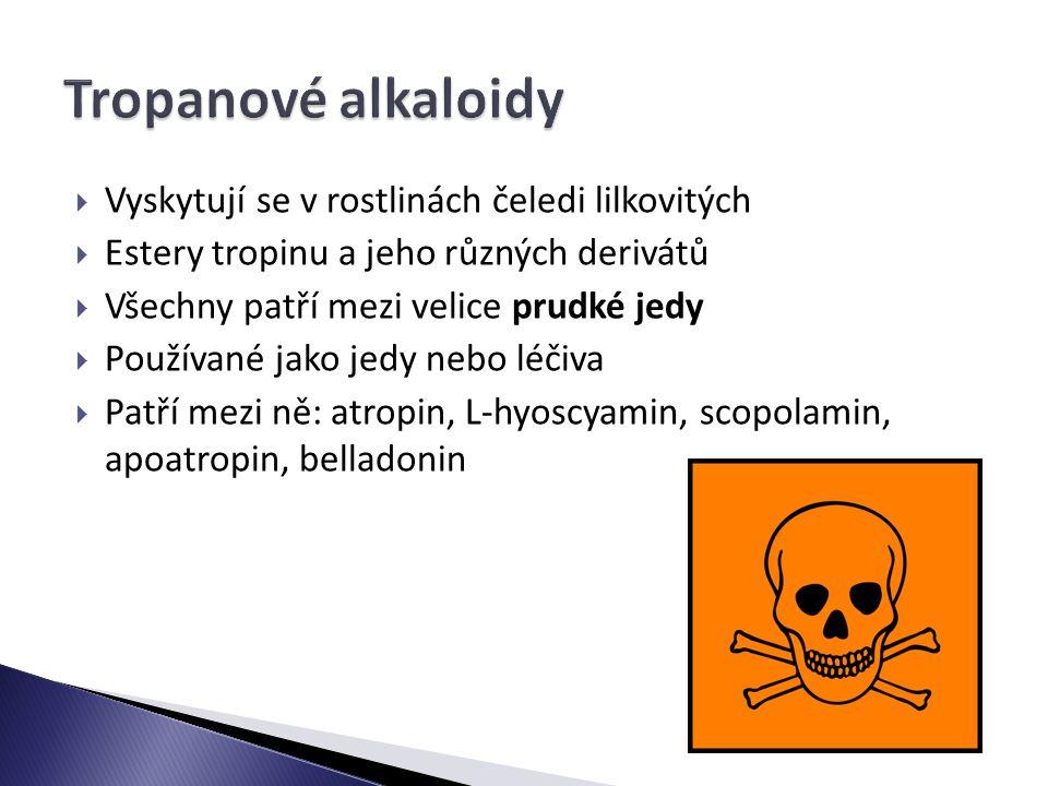 Tropanové alkaloidy Vyskytují se v rostlinách čeledi lilkovitých