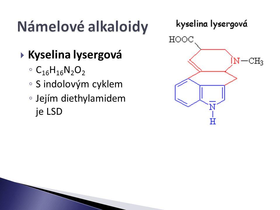 Námelové alkaloidy Kyselina lysergová C16H16N2O2 S indolovým cyklem