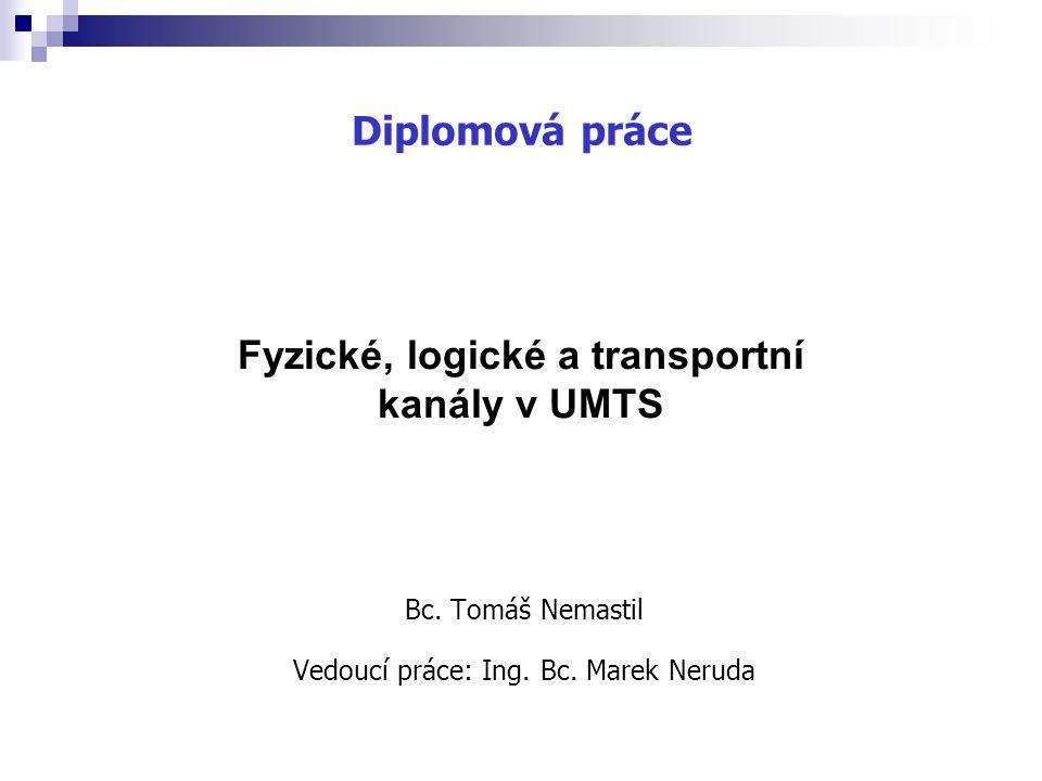 Bc. Tomáš Nemastil Vedoucí práce: Ing. Bc. Marek Neruda