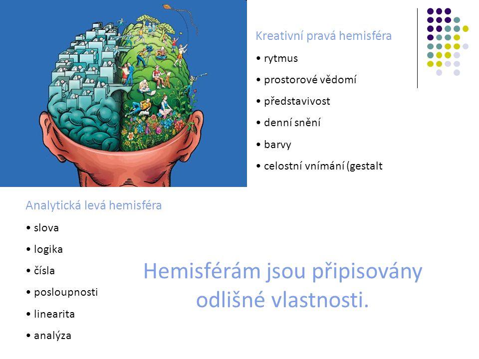 Hemisférám jsou připisovány odlišné vlastnosti.