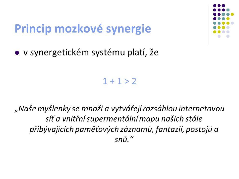 Princip mozkové synergie