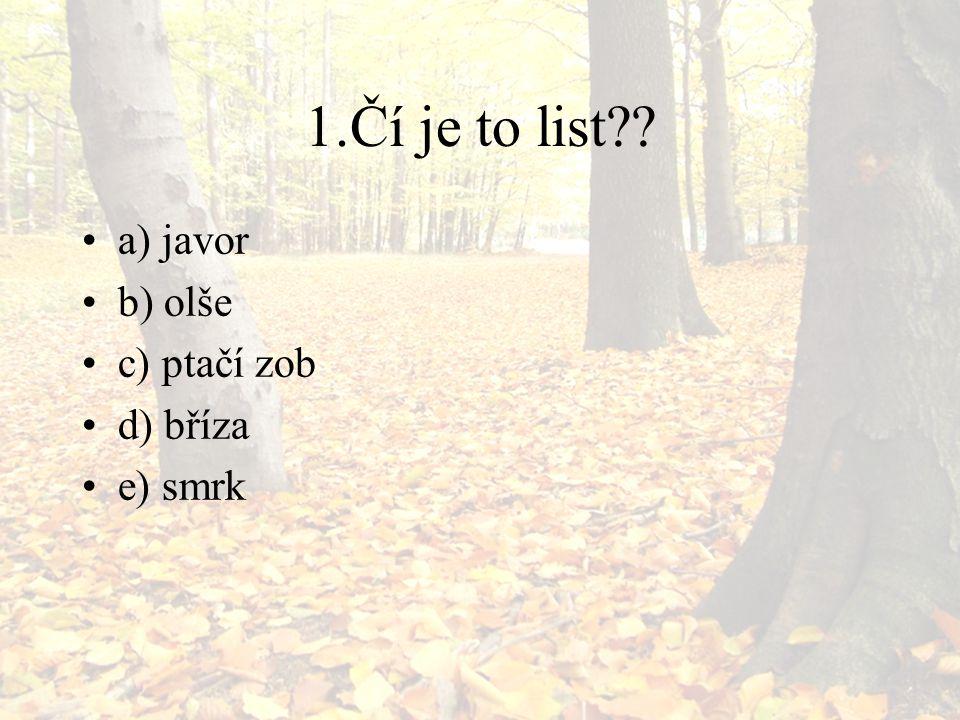 1.Čí je to list a) javor b) olše c) ptačí zob d) bříza e) smrk