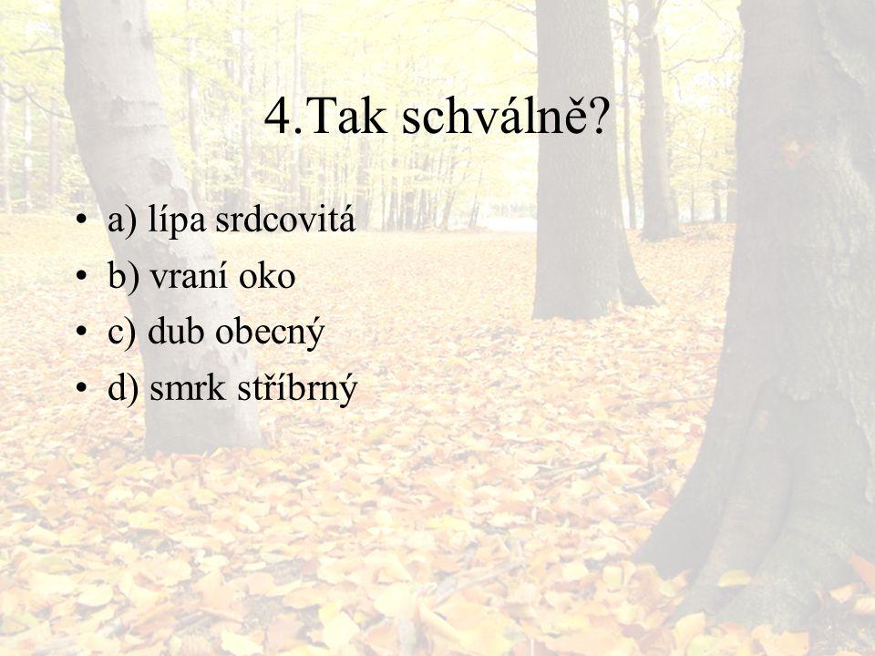 4.Tak schválně a) lípa srdcovitá b) vraní oko c) dub obecný