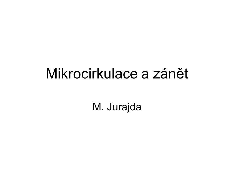 Mikrocirkulace a zánět