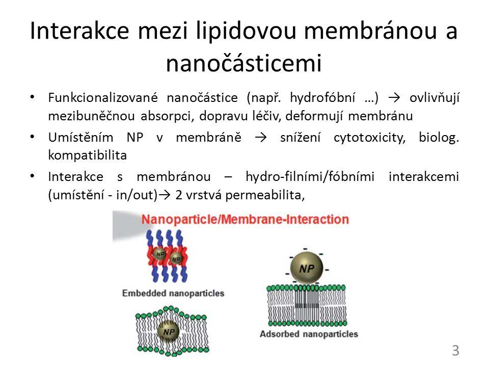 Interakce mezi lipidovou membránou a nanočásticemi