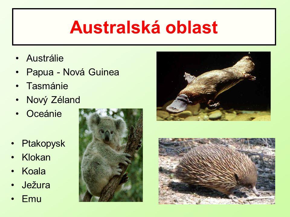 Australská oblast Austrálie Papua - Nová Guinea Tasmánie Nový Zéland