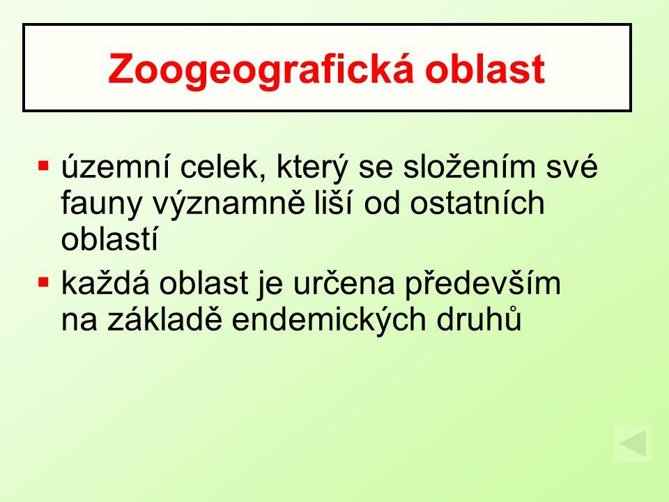 Zoogeografická oblast