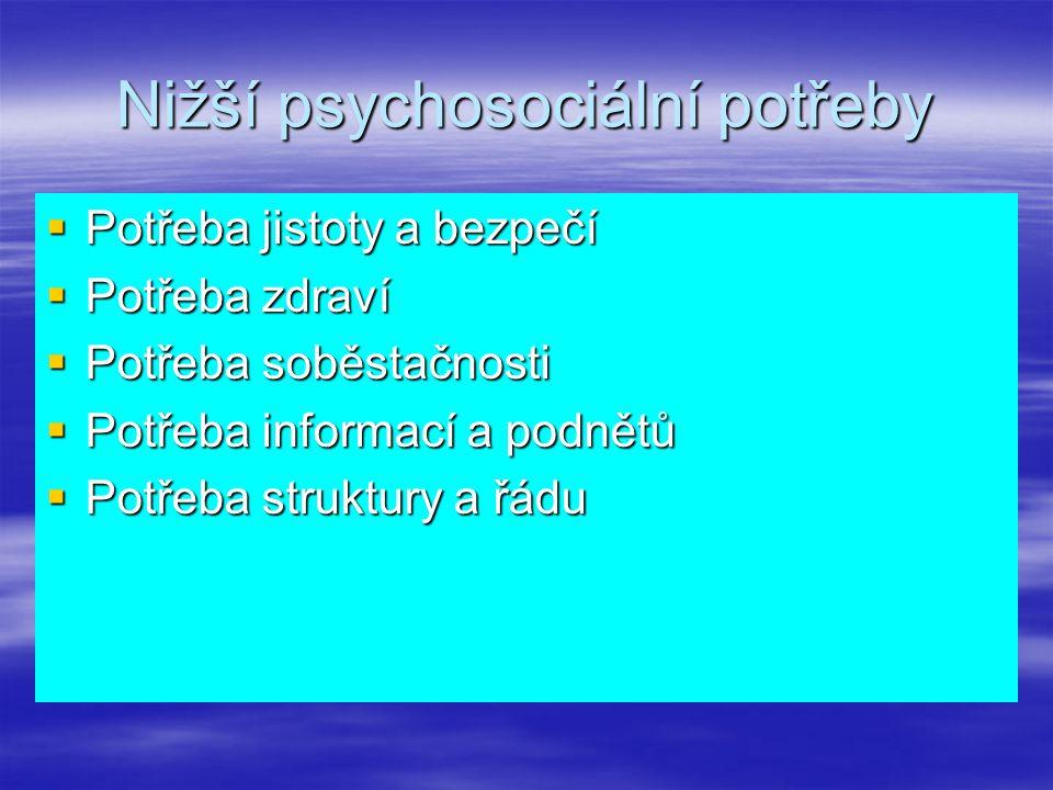 Nižší psychosociální potřeby