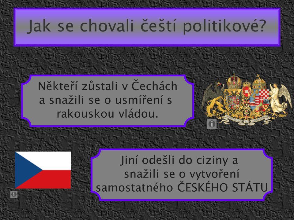 Jak se chovali čeští politikové