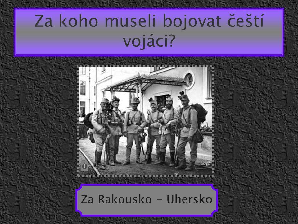 Za koho museli bojovat čeští vojáci