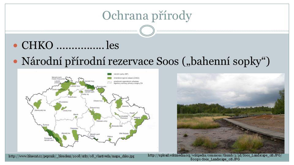 Ochrana přírody CHKO ................ les