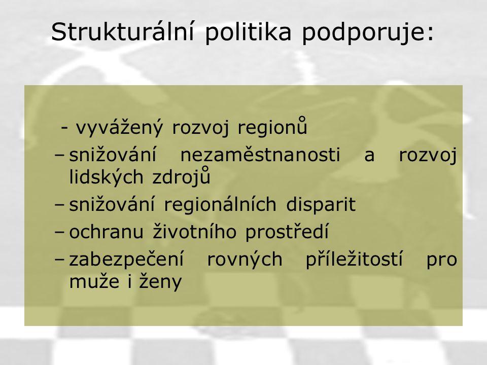 Strukturální politika podporuje: