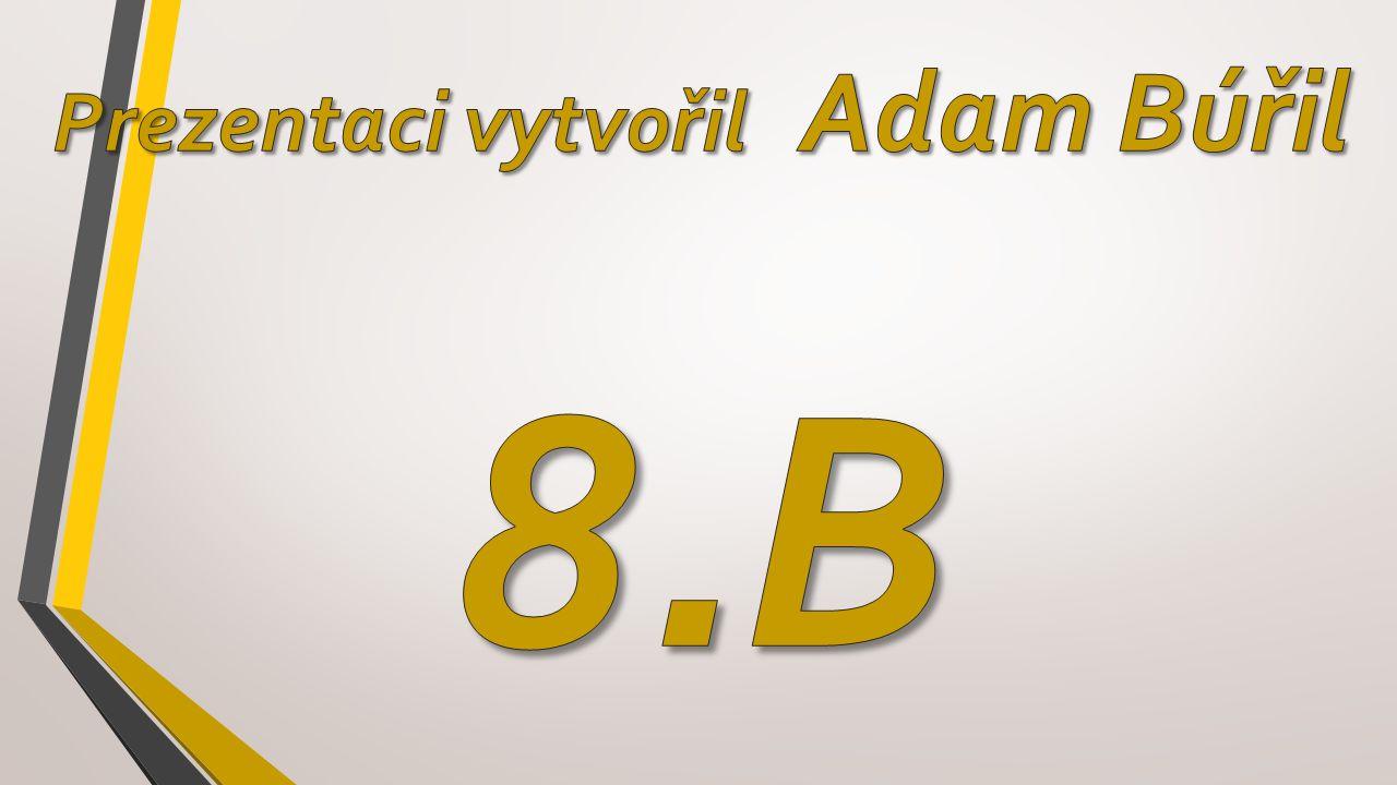 Prezentaci vytvořil Adam Búřil