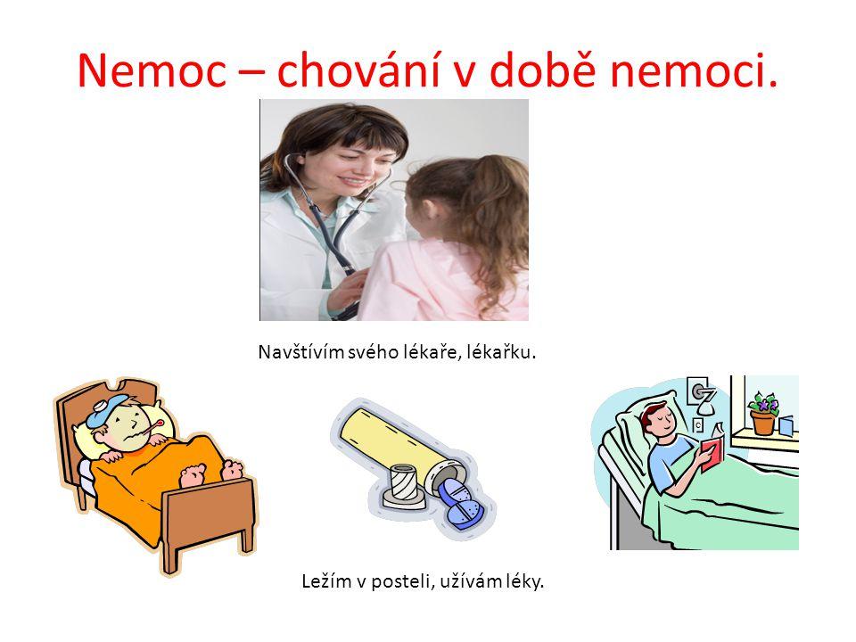 Nemoc – chování v době nemoci.