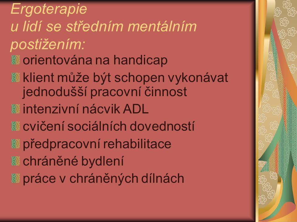 Ergoterapie u lidí se středním mentálním postižením: