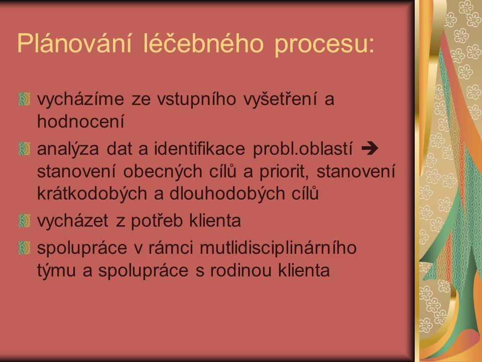 Plánování léčebného procesu: