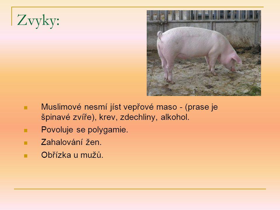Zvyky: Muslimové nesmí jíst vepřové maso - (prase je špinavé zvíře), krev, zdechliny, alkohol. Povoluje se polygamie.