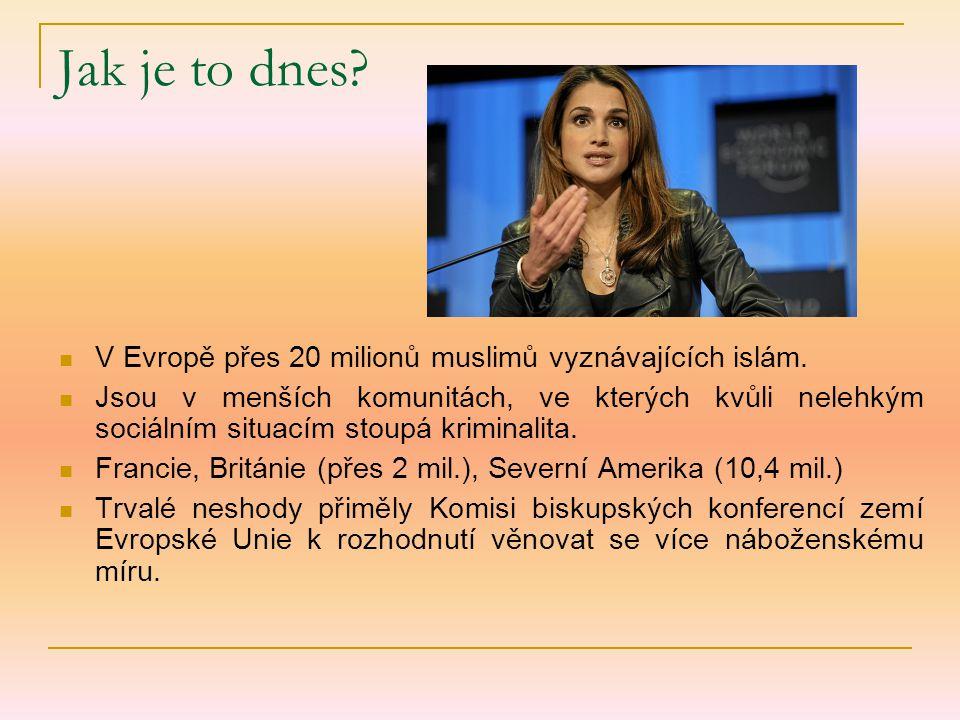 Jak je to dnes V Evropě přes 20 milionů muslimů vyznávajících islám.
