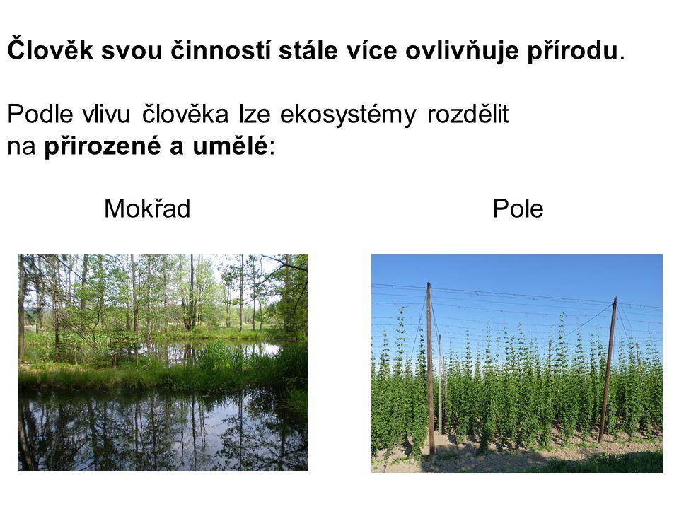 Člověk svou činností stále více ovlivňuje přírodu.