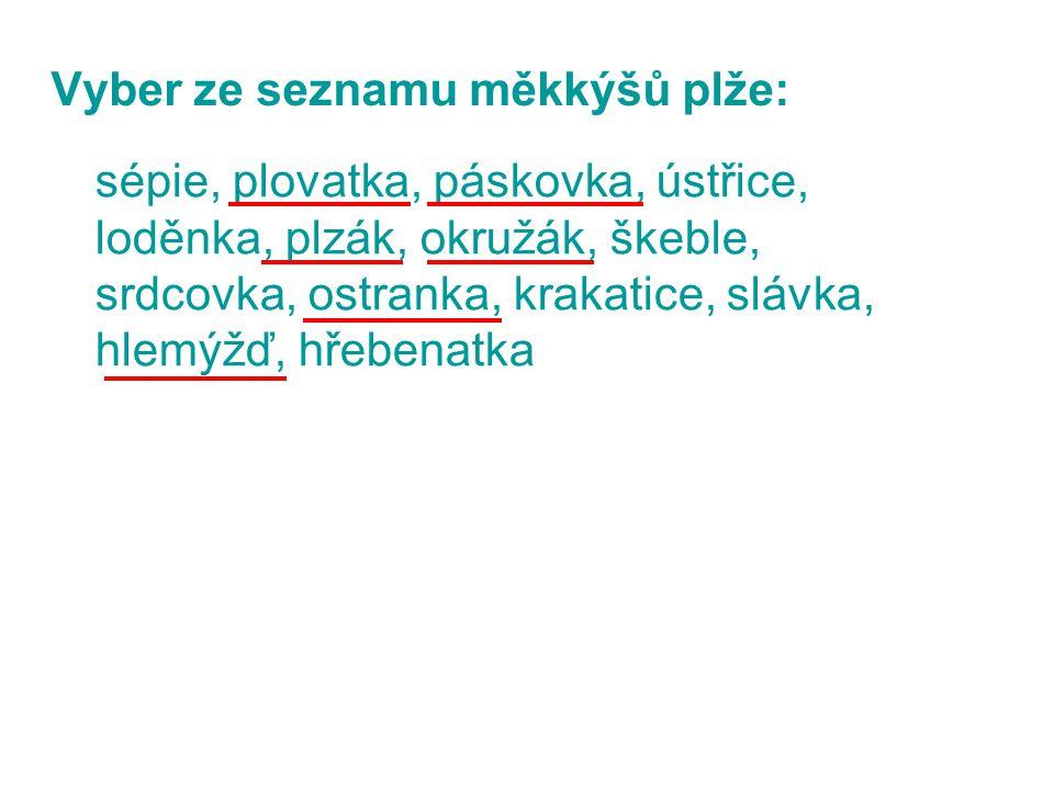 Vyber ze seznamu měkkýšů plže: