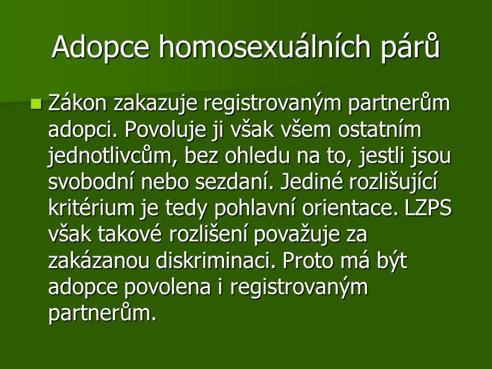 Adopce homosexuálních párů