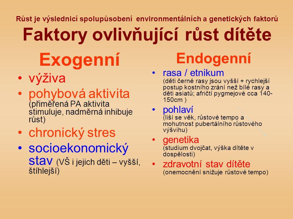 Exogenní Endogenní výživa