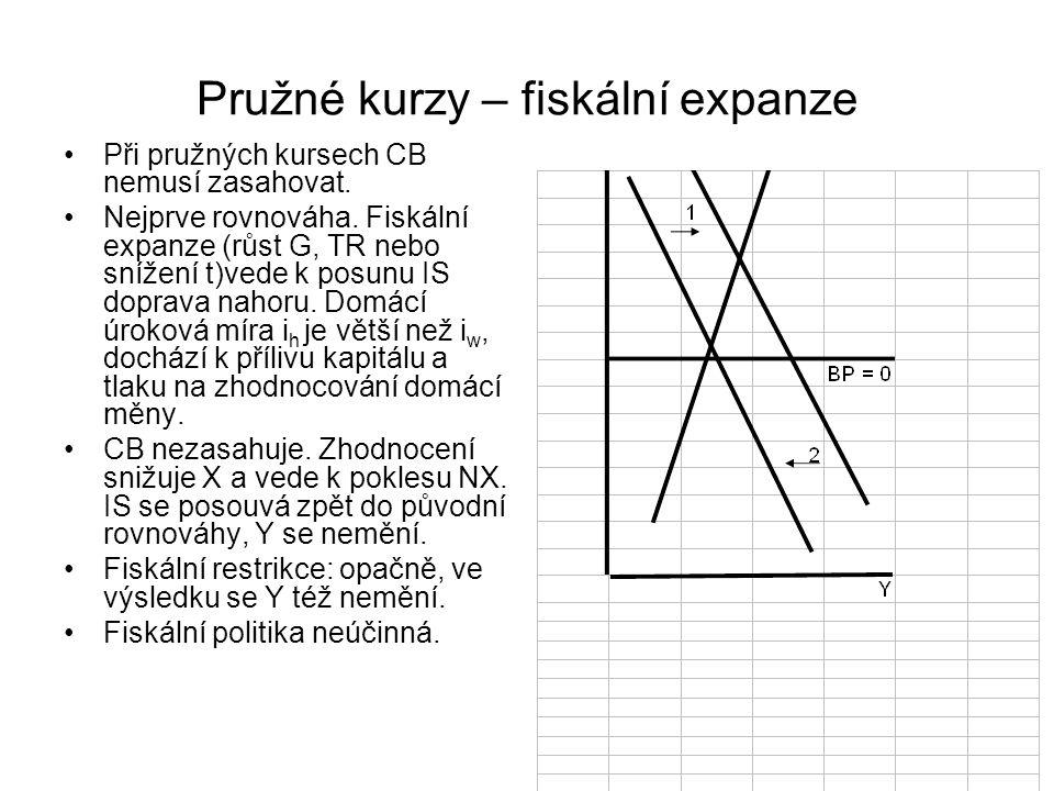 Pružné kurzy – fiskální expanze