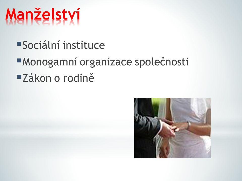 Manželství Sociální instituce Monogamní organizace společnosti