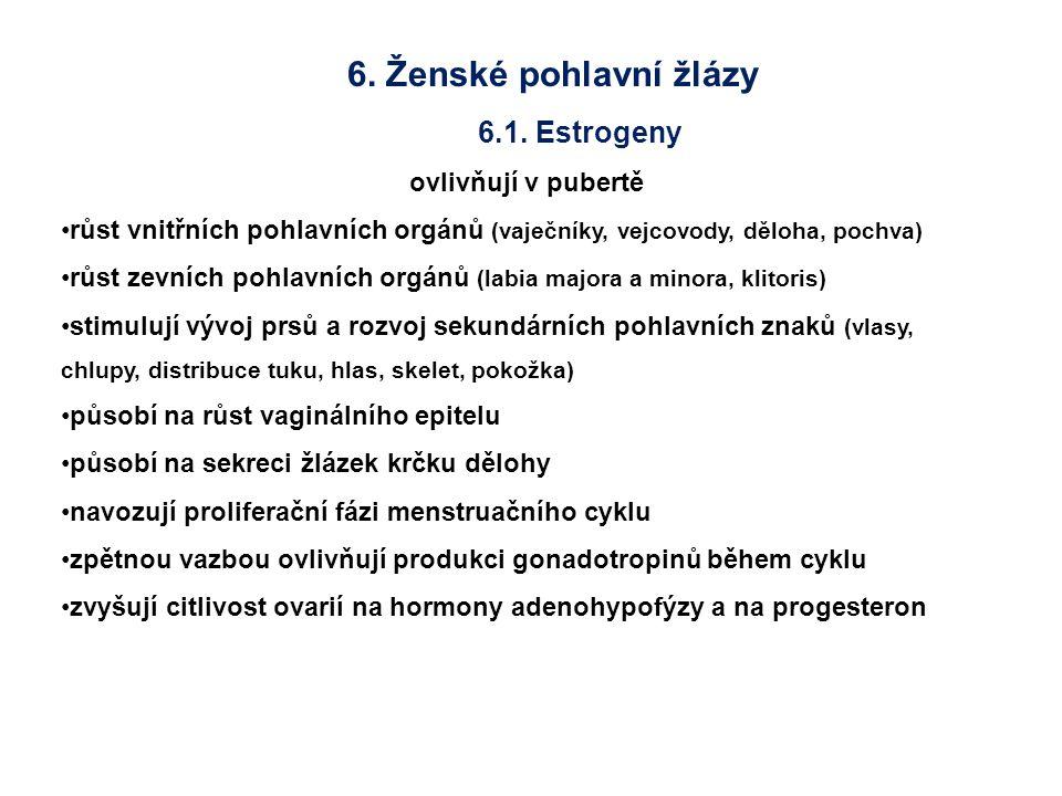6. Ženské pohlavní žlázy 6.1. Estrogeny ovlivňují v pubertě