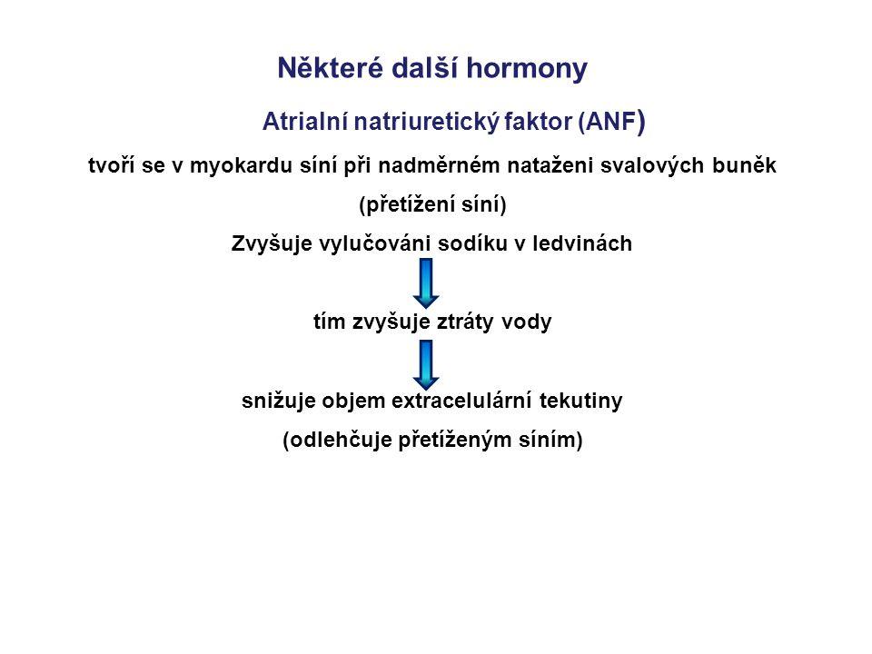 Některé další hormony Atrialní natriuretický faktor (ANF)