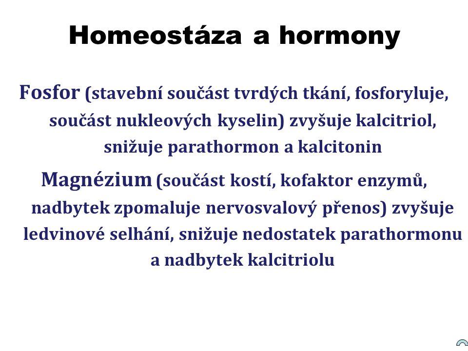 Homeostáza a hormony