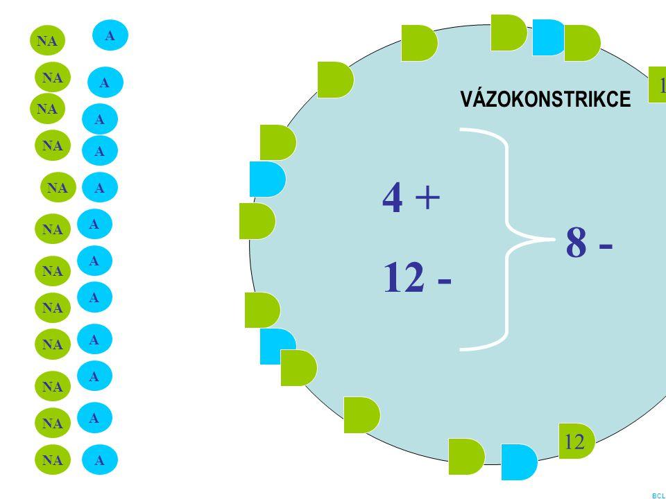4 + 12 - 8 - 1 VÁZOKONSTRIKCE 12 A NA NA A NA A NA A NA A A NA A NA A